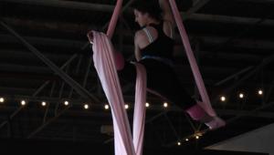 Circus Factory Days Performance